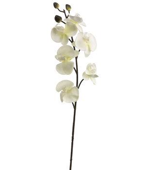 "Bloom Room 30"" Phalaenopsis Orchid Stem-White"