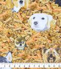 Anti-Pill Plush Fleece Fabric-Realistic Dog With Bone