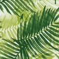 Tommy Bahama Outdoor Fabric 54\u0022- Escape Route Jade