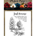 Paper Rose 7 pk Photopolymer Crystal Clear Stamps-Into the Woods