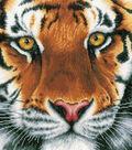 LanArte 13.75\u0027\u0027x13.5\u0027\u0027 Aida Counted Cross Stitch Kit-Tiger