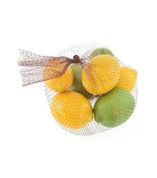 Fresh Picked Spring Lemons & Limes in Mesh Bag