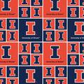 University of Illinois Fighting Illini Cotton Fabric -Block