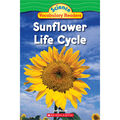 Scholastic Teaching Resources Science Vocabulary Readers: Life Cycle