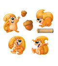 Silly Squirrels Classic Accents Decorations 72/pk, Set of 6 Packs