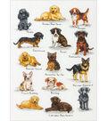 Dog Sampler Counted Cross Stitch Kit-10\u0022X14\u0022 14 Count