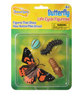 Butterfly Life Cycle Stages Figurines, 4 Per Set, 2 Sets