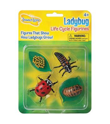 Ladybug Life Cycle Stages, 4 Per Set, 2 Sets