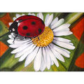 Collection D\u0027Art Diamond Embroidery/Printed/Gem Kit-Chamomile & Ladybug
