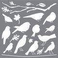 DecoArt Americana Mixed Media 12\u0027\u0027x12\u0027\u0027 Stencil-Feathered Friends
