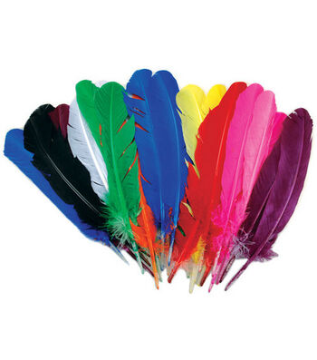 Feather Quills Value Pack-25PK