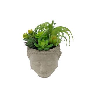 Fresh Picked Spring 7'' Air Plants in Buddha Head