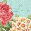 Amscan 36 pk 5\u0027\u0027x5\u0027\u0027 Beverage Napkins-Green & Pink Blissful Blooms