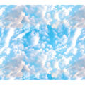 Novelty Cotton Fabric-Blue Clouds