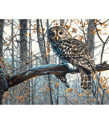 """Dimensions Paint By Number Kit 11""""x14""""-Wise Owl"""