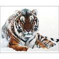 Collection D\u0027Art Diamond Embroidery/Gem Kit 48X38cm-Tiger On The Snow