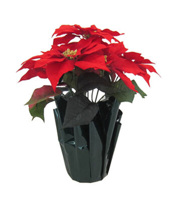 Blooming Holiday Christmas 16'' Poinsettia in Pot-Red