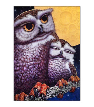 Collection D'Art Diamond Embroidery Painting Technique Kit-Owls