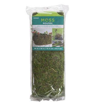 In the Garden 36''x36'' Moss Roll Sheet