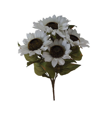 Blooming Autumn Sunflower Bush-White