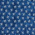 Patriotic Cotton Fabric-Blue Pattern Trapped Stars