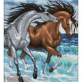 RTO Diamond Mosaic Embroidery Kit 40X50cm-Horses On The Shore