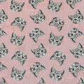Novelty Cotton Fabric-Kitty Faces On Light Pink