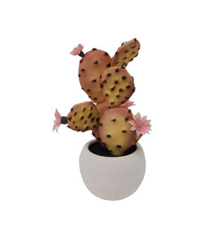 Fresh Picked Spring Desert Aura 11'' Cactus Arrangement-Pink