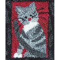 Rachel\u0027s of Greenfield Punch Needle Kit Small Cat