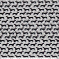 Super Snuggle Flannel Fabric-Black Dachshunds On Gray