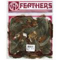 Loose Ringneck Pheasant Heart Plumage 3-4\u0022