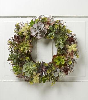 Bloom Room Succulent Mix & Spiral Twig Wreath