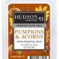 Hudson 43 Candle & Light 6 pk Pumpkin & Acorn Premium Satin Wax Melts