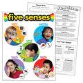 Five Senses Learning Chart 17\u0022x22\u0022 6pk