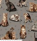 Anti Pill Fleece Fabric -Just Kitten Around