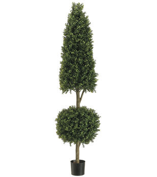 Cone & Ball Shaped Boxwood Topiary in Plastic Pot 6'