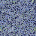 Keepsake Calico Cotton Fabric-Navy Metallic Vines