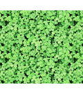 St. Patrick\u0027s Day Cotton Fabric -Photo Real Clover