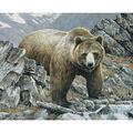 Novelty Cotton Fabric Panel 44\u0022-Bear In The Mountain