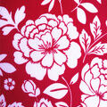 Double Brushed Poly Printed Knit Fabric-Femme Floral on Red