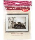 RIOLIS 15\u0027\u0027x10.25\u0027\u0027 Counted Cross Stitch Kit-The Beetle
