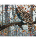 Wise Owl Counted Cross Stitch Kit 14 Count