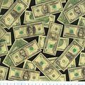 Novelty Cotton Fabric -Tossed Money