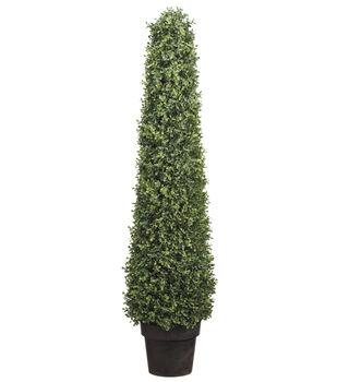 Boxwood Cone Topiary in Plastic Pot 46''