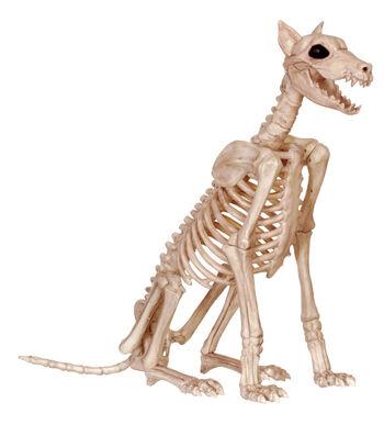 The Boneyard Spike Bones