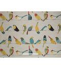 SMC Designs Fabric 56\u0027\u0027-Multi Early Birds