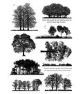 Crafty Individuals Unmounted Rubber Stamp-Listen to the Trees