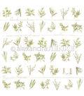 Alexandra Renke Cooking Paper 12\u0022X12\u0022-Small Herbs