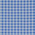 Keepsake Calico Cotton Fabric-Check Light Blue