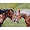 Collection D\u0027Art Diamond Embroidery/Printed/Gem Kit 48x38CM-Horses